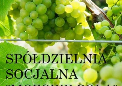 """Spółdzielnia Socjalna """"Mozowe Pola"""""""
